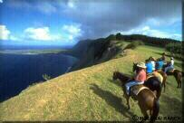 Photo - Trail riders overlooking Kalaupapa