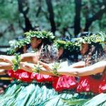 Molokai Hula Halau